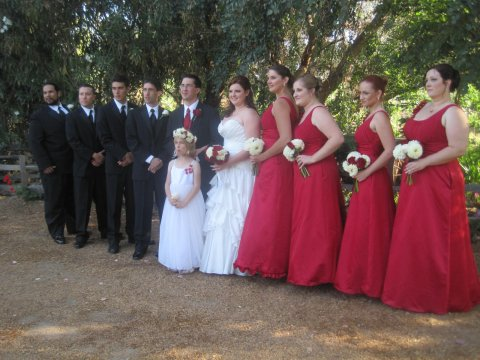 Wedding in the Oaks
